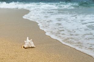 Ocean background-3062011_1280