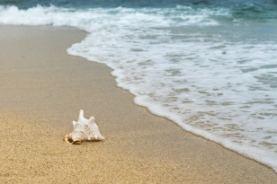 Ocean background-3062011_1280