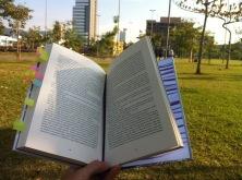 reading-1529413_1280